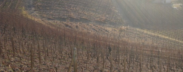 Piemonte 2010 009