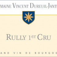2013 Vincent Dureuil Janthial Rully Chene
