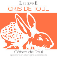 2014 Domaine Lelievre Vin Gris Cotes de Toul rose