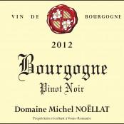 2012 Michel Noellat Bourgogne rouge