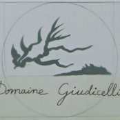 2013 Muriel Giudicelli Patrimonio blanc