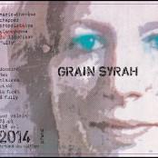 2014 Marie Therese Chappaz Grain Syrah