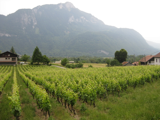 Savoie and Switzerland
